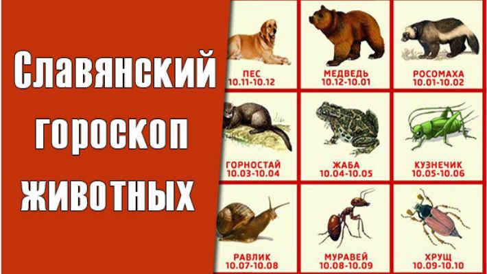 Славянский звериный гороскоп