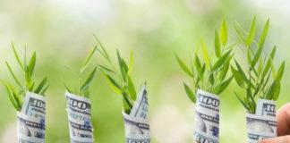 Советы по привлечению денег (видео)