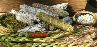 Травы-обереги помогут во многих жизненных ситуациях