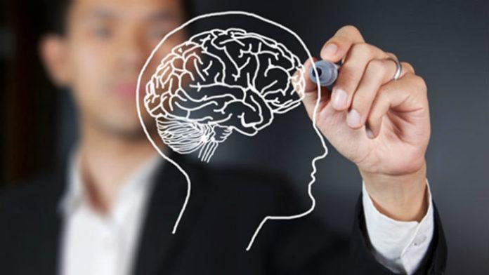 13 простых способов максимально стимулировать работу мозга