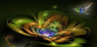 «Цветок счастья»: загадай желание, и оно сбудется