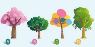Выберите дерево, которое Вам понравилось и узнайте слово, которое Вас характеризует