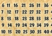 Посмотрите на таблицу, выберите свое число и узнайте, сбудется ли заветная мечта