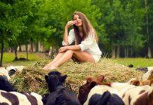"""Очень мудрая притча : """" Я стою 10 коров!"""""""