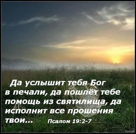 http://mirkrasoty.life/wp-content/uploads/2018/04/14-min.jpg