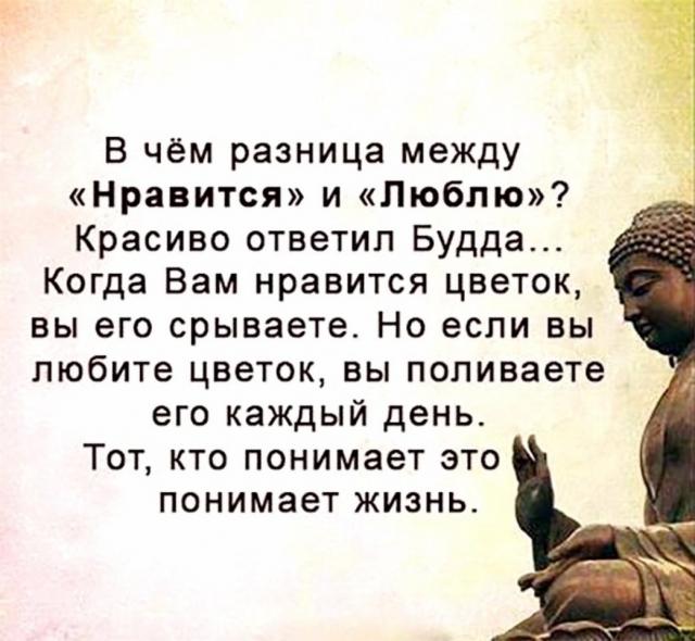 https://womanhappiness.ru/wp-content/uploads/2020/04/5a422767b218b.jpg