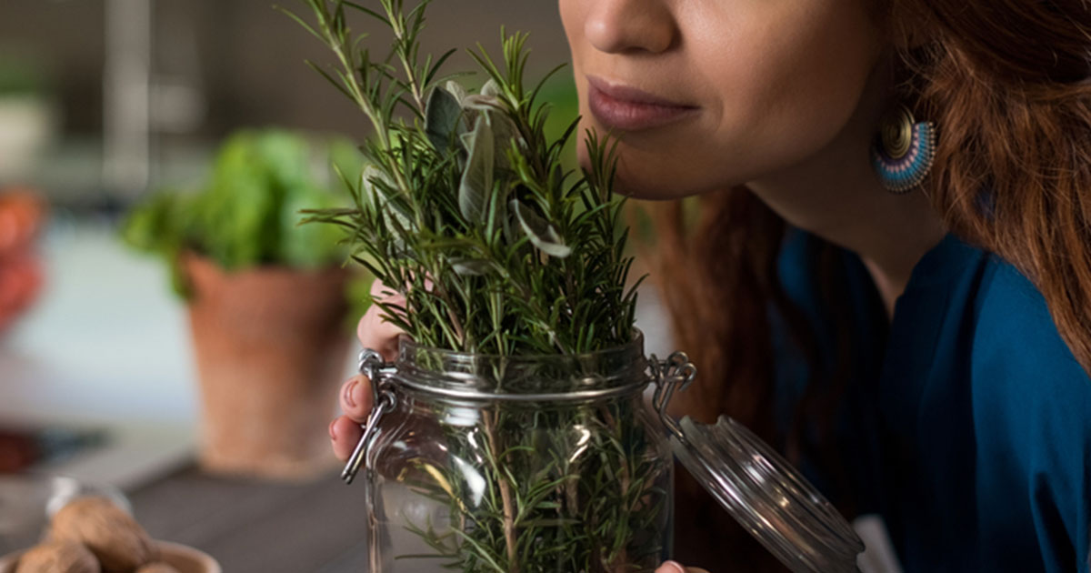 https://fitlife.tv/wp-content/uploads/2015/09/JV_Aug17_05_Scientists-Sniffing-Rosemary-Can-Increase-Ability-to-Remember-by-75.jpg