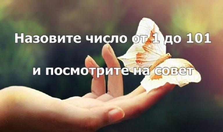http://funnymom.ru/wp-content/uploads/2017/10/1-23-768x457.jpg